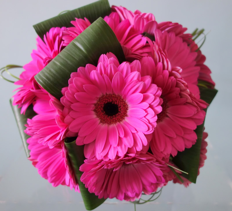 Image result for pink gerberas bouquet