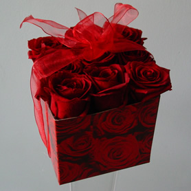 Box of 9 beautiful large headed red roses tied with a sheer organza bow.