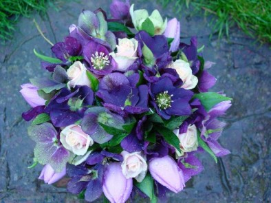 Black hellebores and tulips