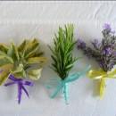 Herb buttonholes