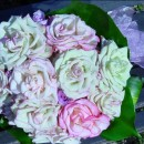 'Illusion' rose hand-tied bouquet