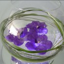 Minimal fish bowl arrangement of floating Vanda blue orchids on crystals
