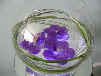 Minimal fish bowl arrangement of floating Vanda blue orchids on crystals