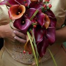 Modern teardrop bouquet of Mango calla lilies & grasses