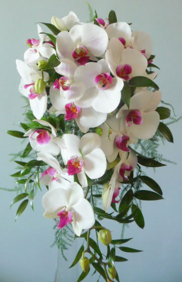 White phalaenopsis orchid shower bouquet