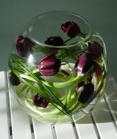 Tulip fish bowl