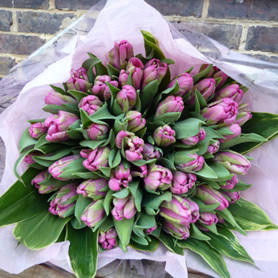 Large hand tied bouquet of tulips.