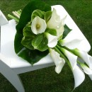Bridal bouquet of white calla lilies.