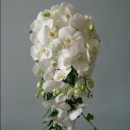 Beautiful shower bouquet of white phalaenopsis orchids.