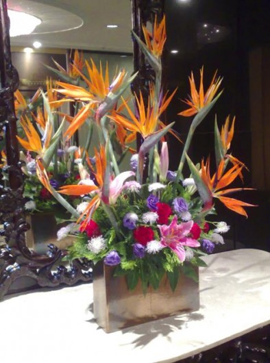 Strelitzia and eustoma