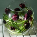 Tulip fish bowl